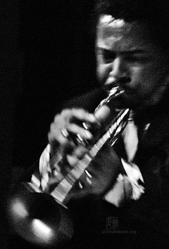 Roy Hargrove - Photo: Schindelbeck