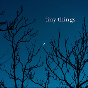 Christian Eckert - Tiny Things - Cover