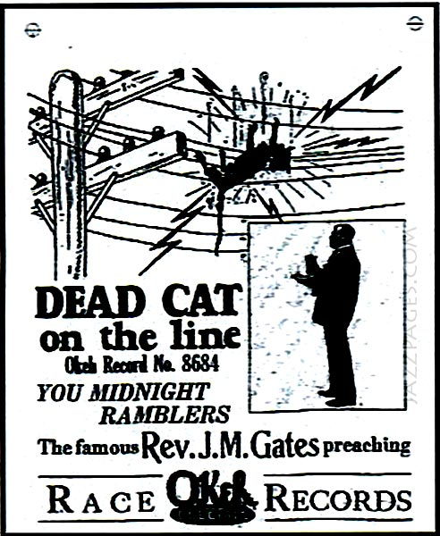 Dead Cat On The Line - Werbung Grafik